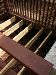 Installed the joist hangers off the double joist and notched the joists to sit on the existing deck because it was lower than the deck landing.