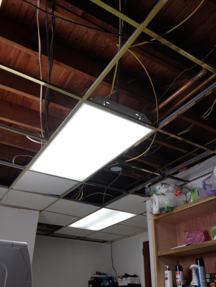 Soon after all the tiles were removed I went through and made sure the wires were properly attached to the floor joists from above. The old grid system kept the wires from completely sagging. after the wires were secured the grid came down.